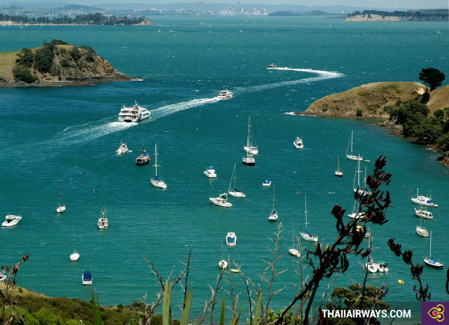 ve may bay di auckland gia ca phai chang