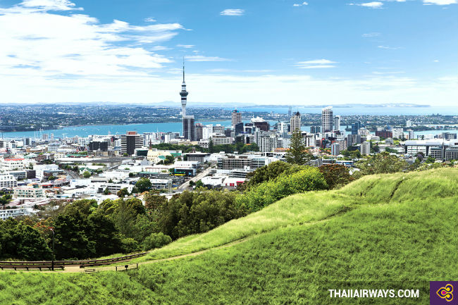 ve may bay di auckland gia re