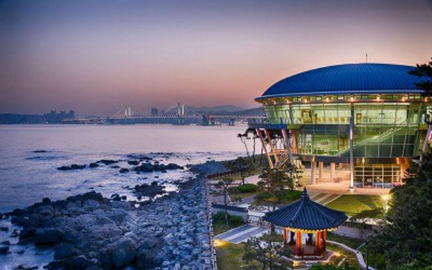 Vé máy bay đi Busan giá rẻ Thai Airways