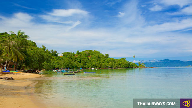 ve may bay di koh samui gia re