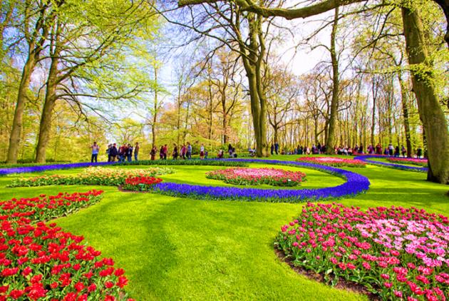 Những lễ hội đặc sắc tại Hà Lan bạn không nên bỏ qua